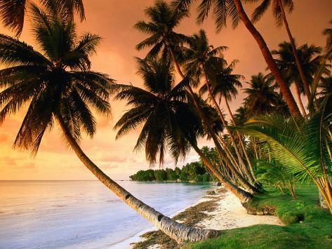 Blue Lagoon Resort Beach, Weno Centre, Micronesia Fotografisk trykk