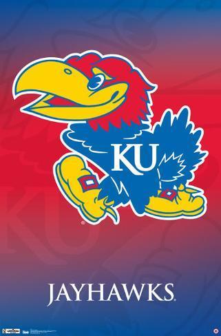 Kansas University 2011 Plakat
