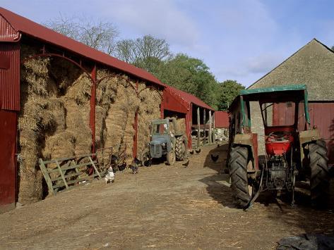 A Farm, Near Avoca, County Wicklow, Leinster, Eire (Republic of Ireland) Fotografisk tryk