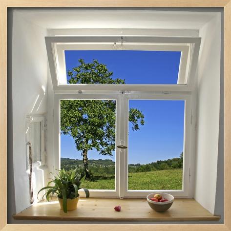 Window View Fotografisk trykk