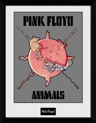 Pink Floyd - Animals Samletrykk