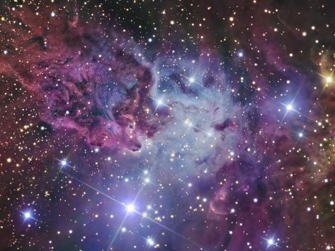 Fox Fur Nebula Fotografisk trykk