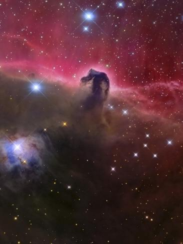 The Horsehead Nebula, Barnard 33 in the Orion Constellation Fotografisk trykk