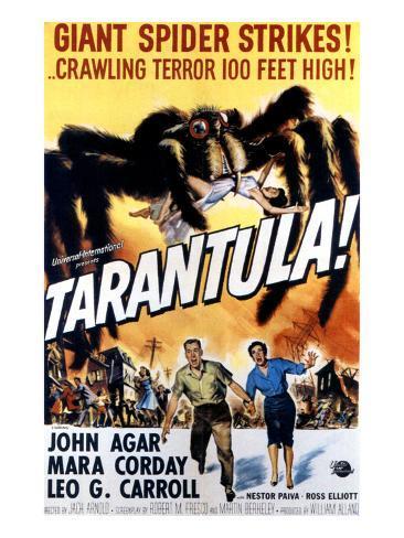 Tarantula, John Agar, Mara Corday, 1955 Foto