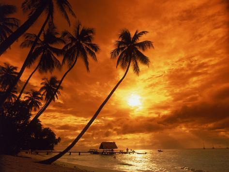 Sunset at Pigeon Point, Tobago, Caribbean Premium fototryk