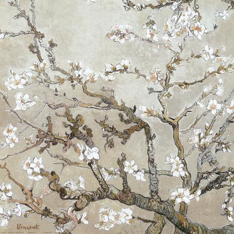 Grene fra blomstrende mandeltræ, Saint-Rémy, c. 1890, gyldenbrunt Kunsttryk