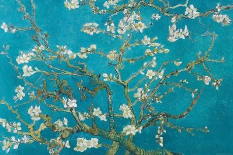 Grene med mandelblomster, Saint-Rémy, 1890 Plakat
