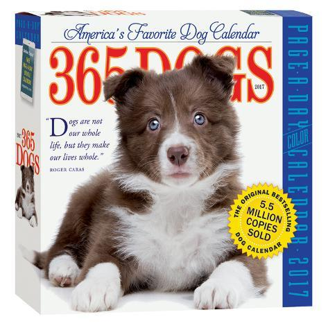 365 Dogs Color Page-A-Day - 2017 Boxed Calendar Kalenders