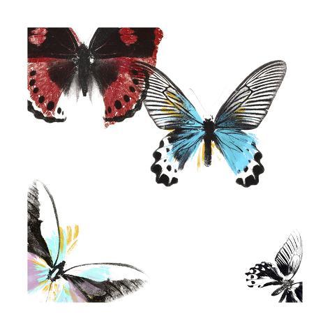 Butterflies Dance I Kunstdruck