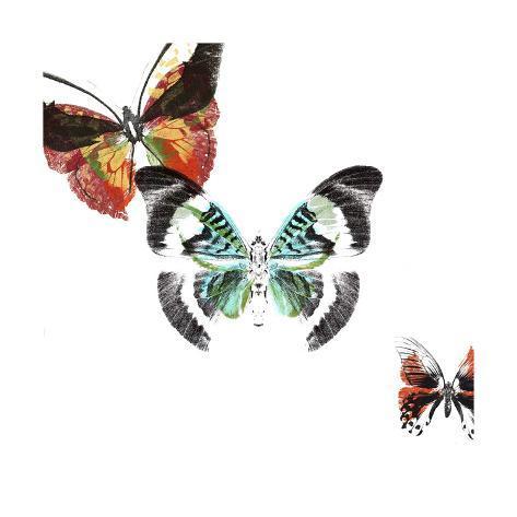 Butterflies Dance III Kunstdruck