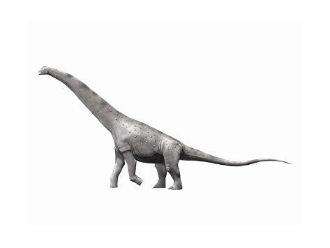 Alamosaurus Sanjuanensis, a Sauropod from the Late Cretaceous Period Kunstdruck