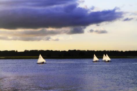 Sunfish Sailors I Fotografie-Druck