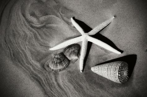 Tracks of the Tide II Fotografie-Druck