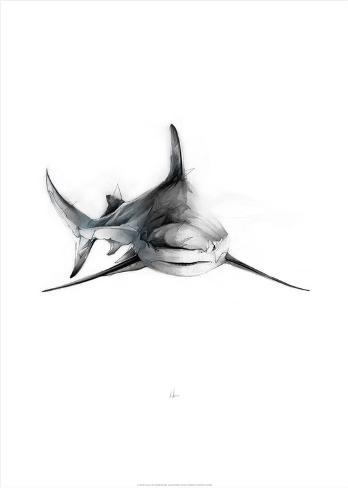 Shark 2 Kunstdruck