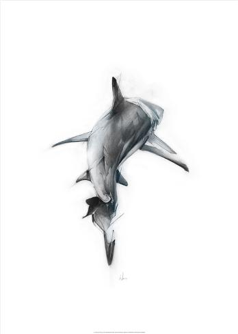 Shark 3 Kunstdruck