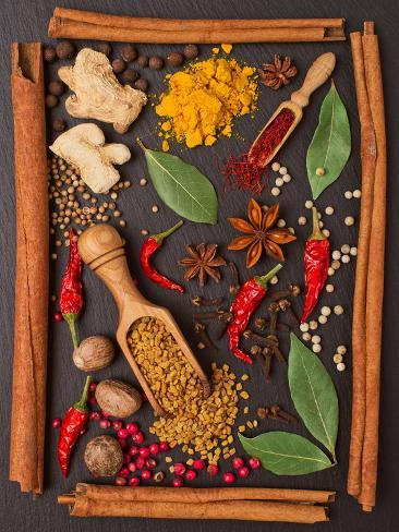 Still Life with Spices and Herbs in the Frame Fotografie-Druck