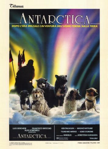 Antarktis Neuheit