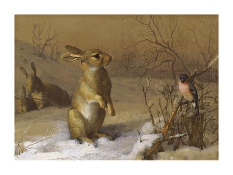Rabbit and Bullfinch Giclée-Premiumdruck