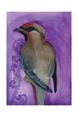 Bird Study X Kunstdruck