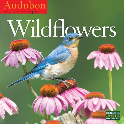 Audubon Wildflowers - 2017 Calendar Kalenders