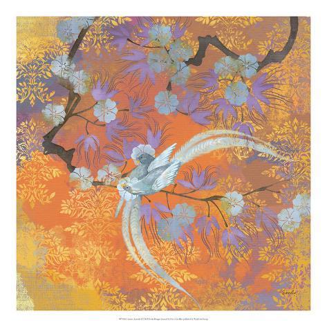 Aurora Australis I Kunstdruck