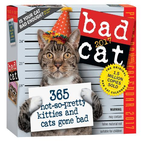 Bad Cat Color Page-A-Day - 2017 Boxed Calendar Kalenders