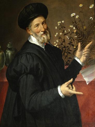 The Botanist Giclée-Druck