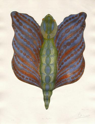 Mr Papillon III Limitierte Auflage