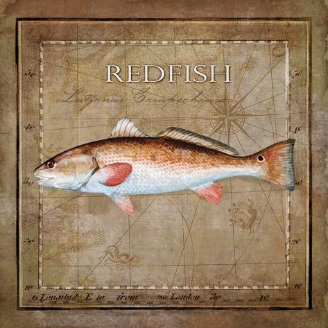 Ocean Fish IX Kunstdruck