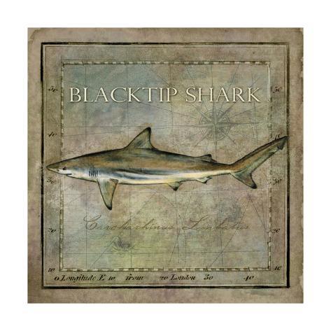 Ocean Fish VI Kunstdruck