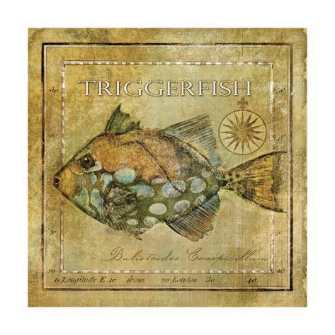 Ocean Fish XI Kunstdruck