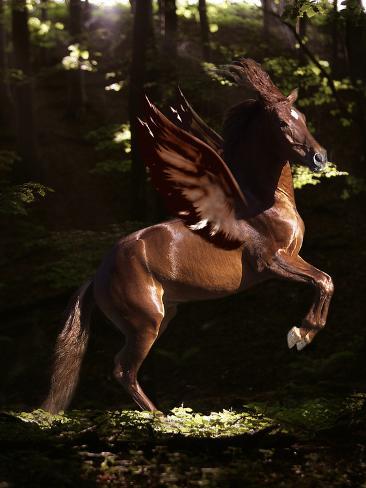 Fantasy Horses 16 Fotografie-Druck