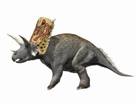 Bravoceratops Polyphemus, Late Cretaceous of Texas Giclée-Premiumdruck