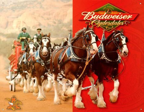 Budweiser Clydesdales Blechschild