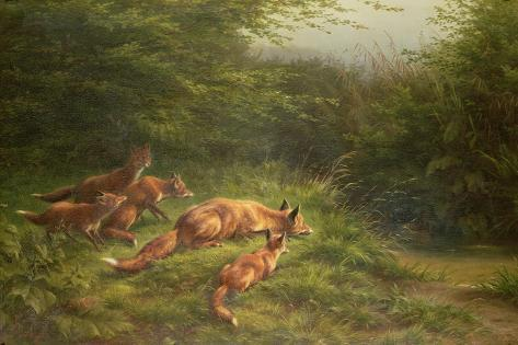 Foxes Waiting for the Prey Giclée-Druck