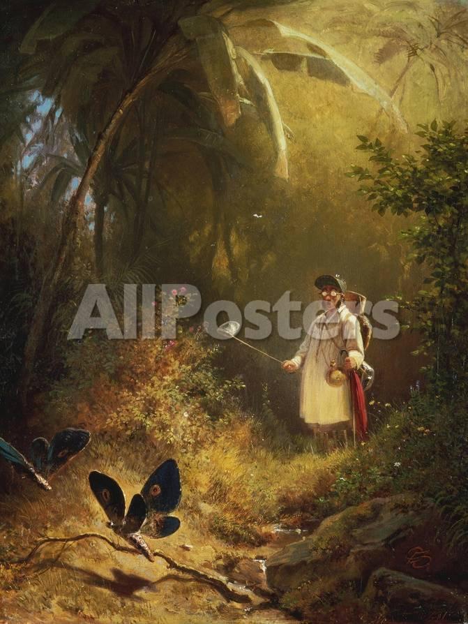 The Butterfly Catcher Giclée-Druck von Carl Spitzweg - bei AllPosters.ch