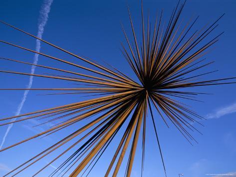 B of the Bang, Modern Steel Sculpture, City of Manchester Stadium, Manchester, England Fotografie-Druck