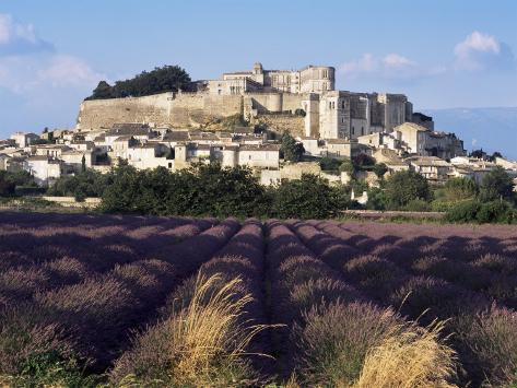 Grignan Chateau and Leavender Field, Grignan, Drome, Rhone Alpes, France Fotografie-Druck
