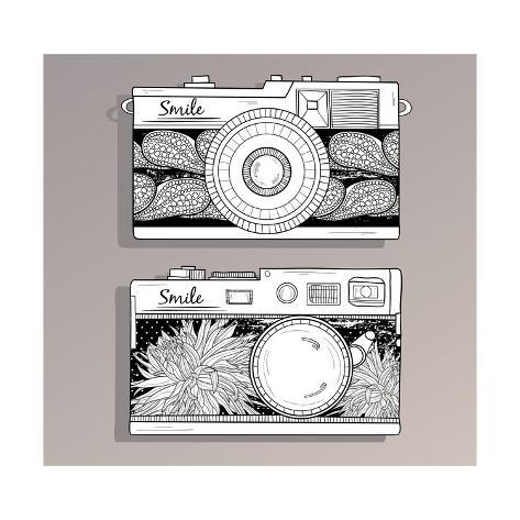 Retro Photo Cameras Set. Vintage Cameras With Flowers Kunstdruck