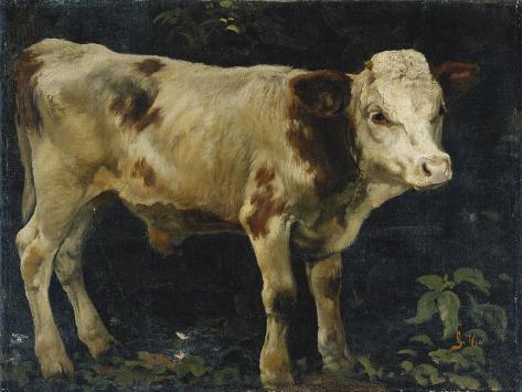 A Bull Calf, 1876 Giclée-Druck