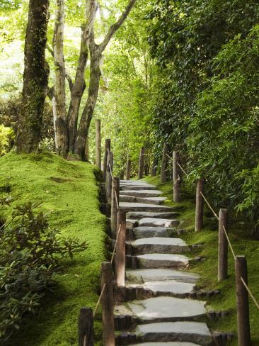 Stone Steps Leading Through Shoyoen Garden at Rinno-Ji Temple Fotografie-Druck