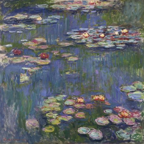 Wasserlilien Kunstdruck