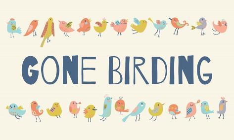 Gone Birding - Colorful Birds Kunstdruck