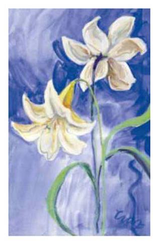 Weiße Blumen hinter blauem Hintergrund Kunstdrucke von Cruz bei ...