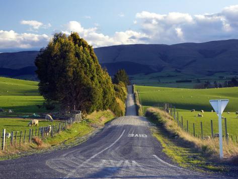 Farmland near Balclutha, South Otago, South Island, New Zealand Fotografie-Druck