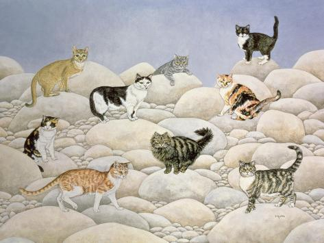 Lynn Valley Cats Giclée-Druck