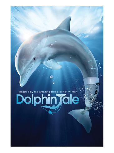 Dolphin Tale I Kunstdruck