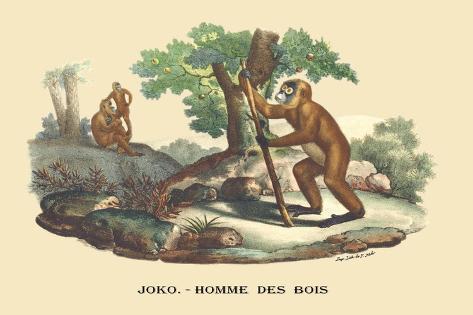 JOKO, Homme des Bois Wandtattoo