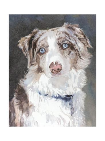 Bogan Australian Shepherd Kunstdruck