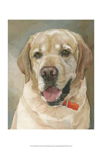 Captain Yellow Lab Kunstdruck